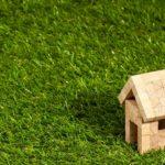zielone dachy intensywne